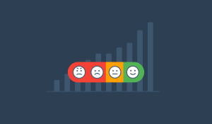 Net Promoter Score Explained